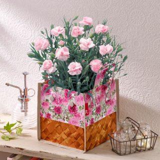 母の日にまだ間に合う!日比谷花壇で「花ともう一品ギフト」ト注文!
