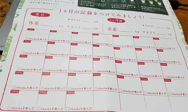 オハオハグリーンスムージーのジュースクレンズダイエット日記